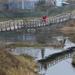 A woman walks along a wooden bridge across the river of Usolka in the village of Taseevo, northeast of Krasnoyarsk, Siberia, October 3, 2014. Picture taken October 3, 2014. REUTERS/Ilya Naymushin (RUSSIA - Tags: SOCIETY ENVIRONMENT) - RTR48WDF